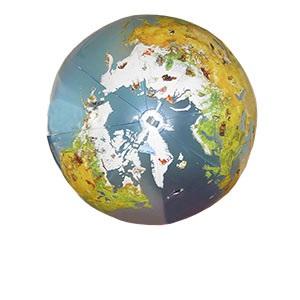 купить шары гиганты Ростов